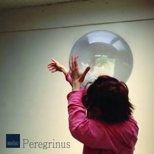 peregrinus